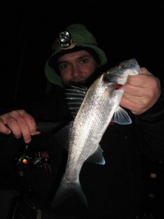 SHINJIN SIS 702UL - Spéciale Rockfishing