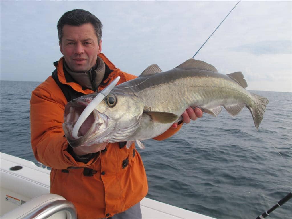 Pascal Capitaine pêche au majikeel