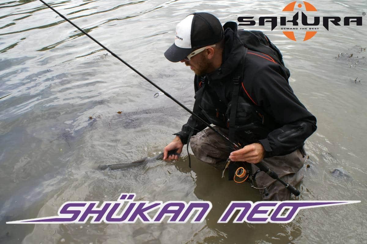 cannes Sakura Shukan Neo