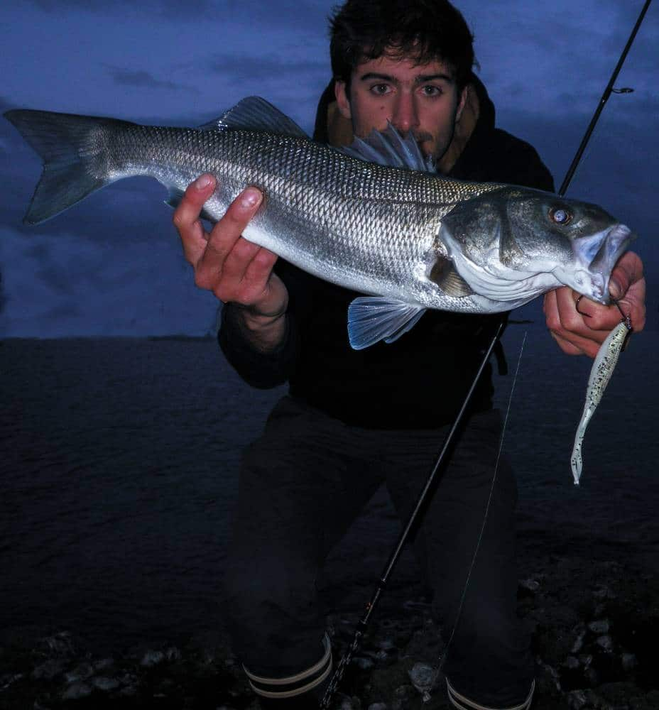Slit finesse test en mer sakura fishing for Bon tempe lake fishing