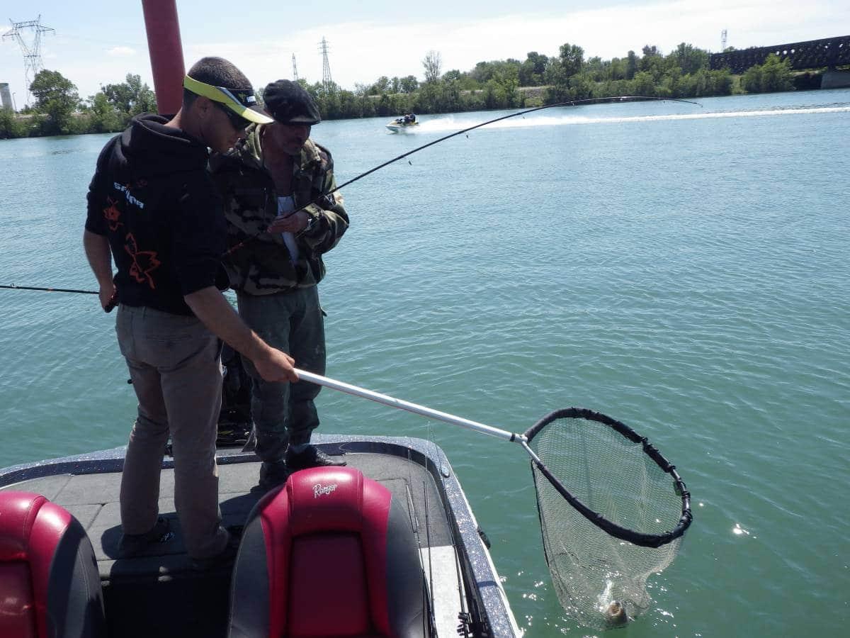 Pêche du Sandre en bateau