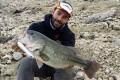 bass-espagnol-au-Mousty-125F