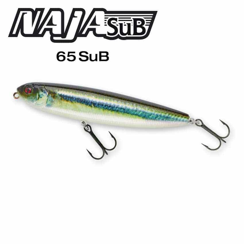 vignette-Naja-Sub-65-2021