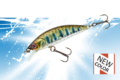 vignette-transition-Phoxy-Minnow-40-50-62-S-2020