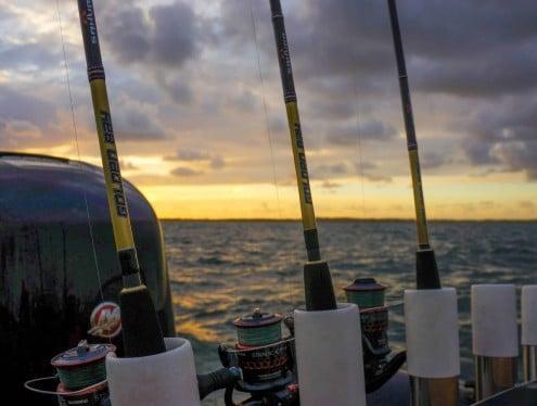 Sélection de cannes sakura golden bay sur le bateau du guide de peche Jean Servant