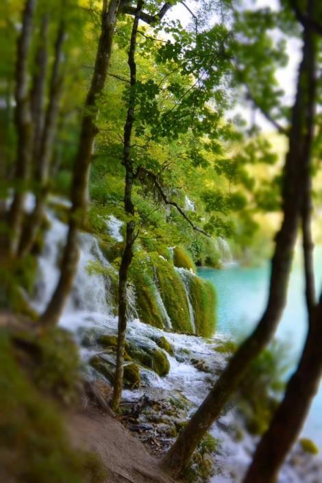 cascade en forêt dans le parc de Plivitce en Croatie