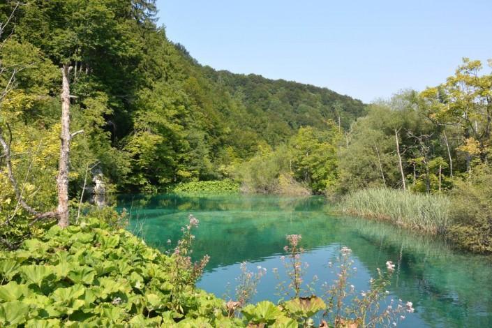 lac intermédiaire du parc de plivitce en Croatie