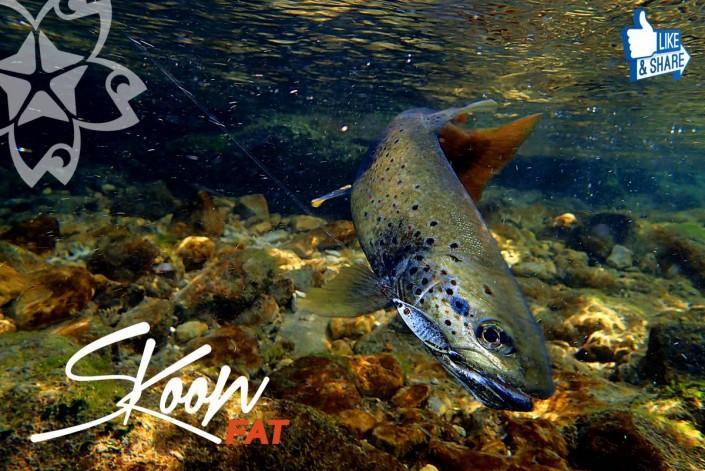sakura fishing skoon fat concours facebook