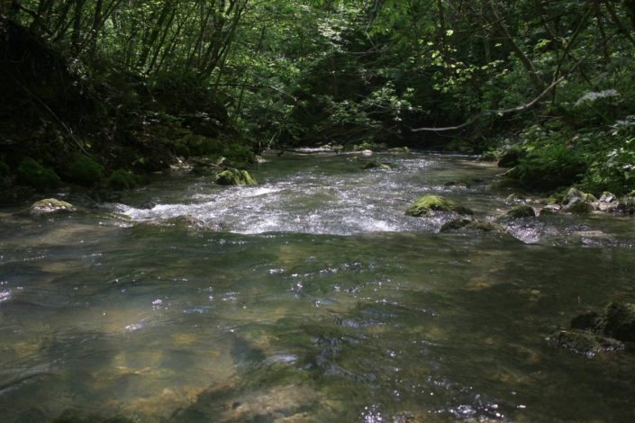 small mountain stream in croatia