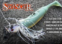 swinger_montage