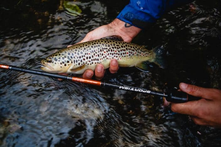 nice-brown-trout-from-croatia-caught-with-new-sportism-2014-sakura-fishing