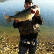 big bass marocain