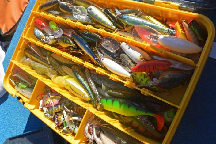 inside-my-box-tanguy-marlin-sakura-alcantara