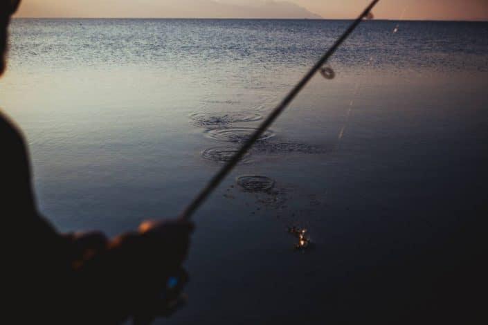 fishing for leerfish in croatia sakura