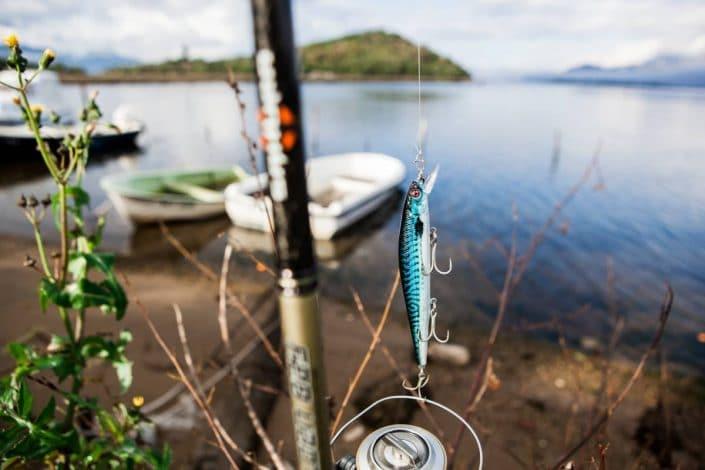 new realistic finish on Pride minnow sakura real life mackerel