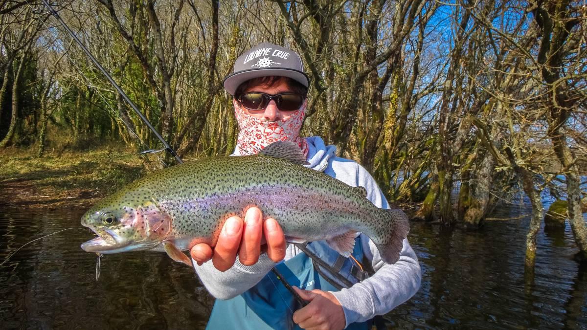 nice rainbow trout caught on sakura Imara inline spoon