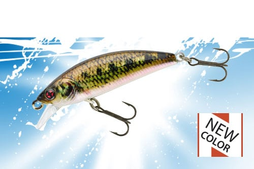 vignette-transition-phoxy-minnow-40-50-62-s-2019
