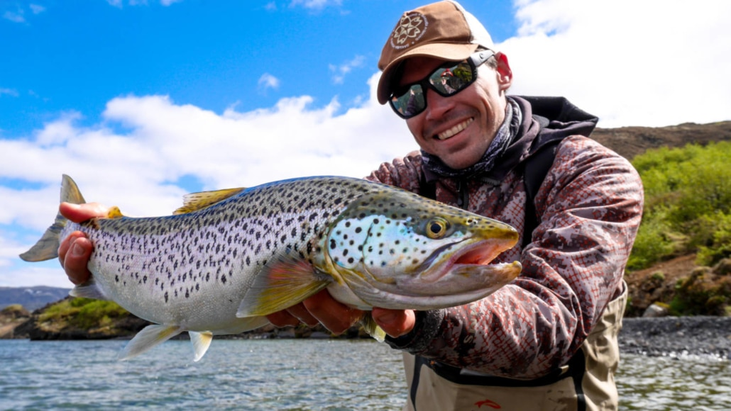 ice age brown trout
