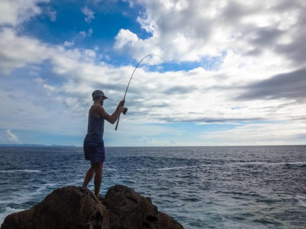 Sakura pêche en nouvelle-zelande