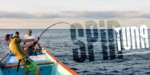 vignette-autre-mitsio-tuna