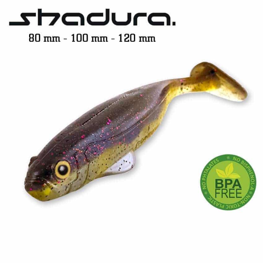 vignette-shadura-2021