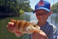 joris-garrigoux-sakura-fishing_2