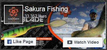 facebook Sakura 12-2020