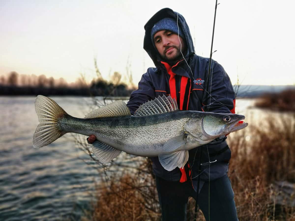 pêche-du-sandre-en-hiver_3